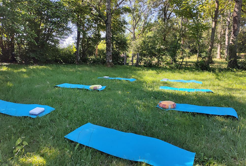 Cours d'été à Sphère Yoga